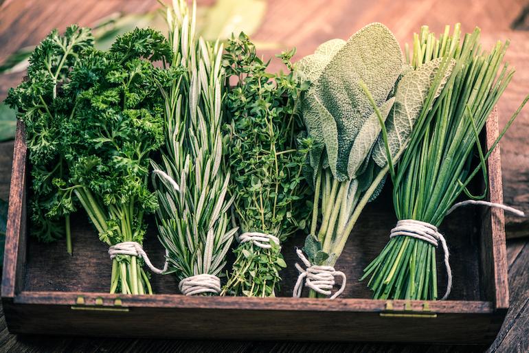 Αποτέλεσμα εικόνας για Αυτές είναι οι ασθένειες που θεραπεύει κάθε βότανο – Δείτε τον πλήρη οδηγό